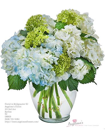 Florist Bridgewater NJ