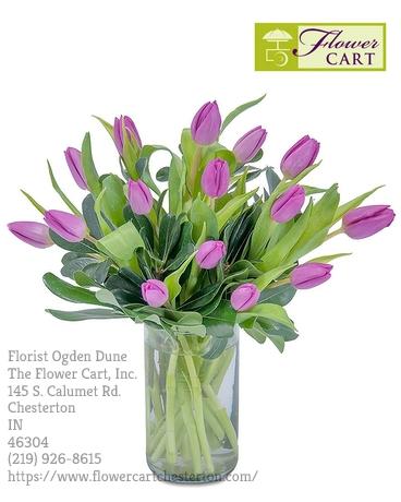 Florist Ogden Dune