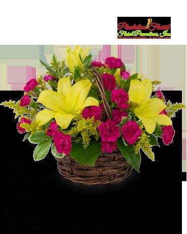 Florist Southwest Ranch FL