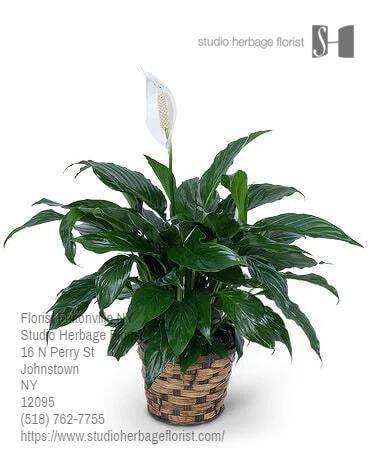Florist Fultonville New York